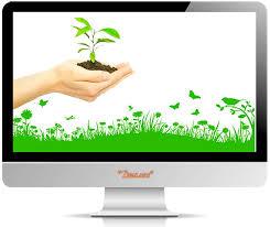Заказать дипломную работу по агрономии Дипломная работа в Новосибирске