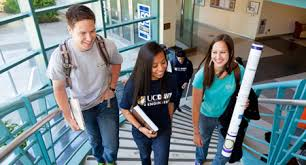 the difference between technical and academic essays to ace your  discover the difference between technical and academic essays to ace your class the assistance of essay writing service
