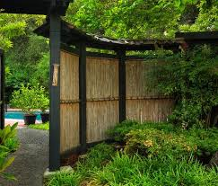 Small Picture Best 25 Bamboo screening ideas on Pinterest Bamboo garden