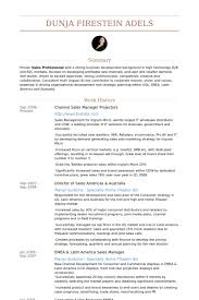 Channel Sales Manager Resume samples - VisualCV resume samples ...