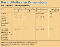 How To Build A Birdhouse Love This Idea Bird Houses Diy