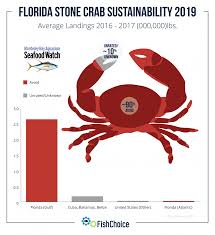 King Crab Leg Size Chart Florida Stone Crab Fishchoice