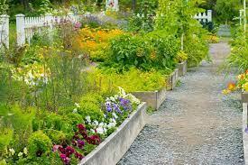 starting a garden from scratch
