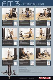 gym workout exercises chart pictures