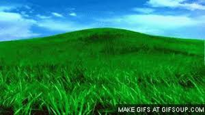 green grass field animated. Grass How To Create An Animated Gif,animated Gif Maker,create,animated Green Field