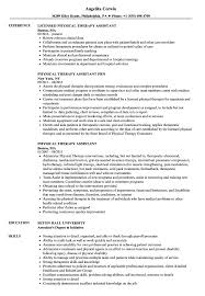 Physical Therapist Assistant Job Description For Resume Physical Therapy Assistant Resume Samples Velvet Jobs 19