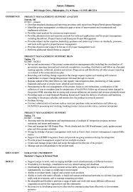 Project Management Support Resume Samples Velvet Jobs