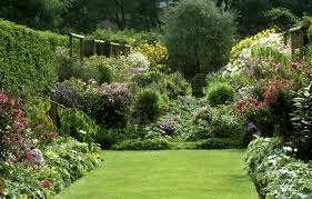 how to grow an english country garden