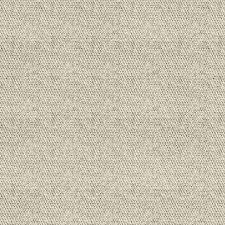 carpet 15 x 15. pebble path 15-pack 24-in x ivory needlebond adhesive- carpet 15