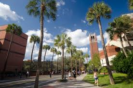 uf college application essay uf admissions essay buy university of year old returning college student recalls rules for women students wander the university of florida campus