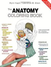Small Picture The Anatomy Coloring Book by Wynn Kapit