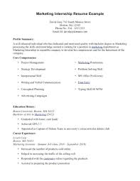 Template It Internship Resume Sample Accounting Student For Examples