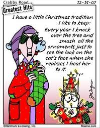 Funny Christmas Quotes Adorable Funny Christmas Pictures 48 Pics