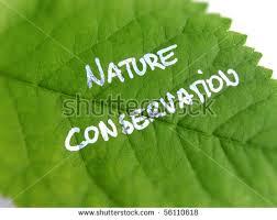 nature essay topics loving nature essay topics