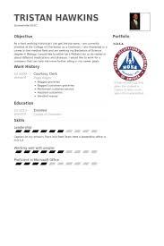 Courtesy Clerk Resume Samples Visualcv Resume Samples Database