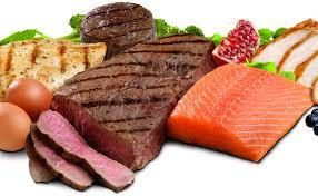 Nadelen proteinedieet
