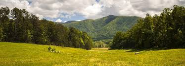 The Top Great Smoky Mountains National Park Outdoor Activities Tours