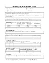 format of a management report status meeting template it management report program monthly