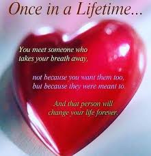 Quotes About Finding The Love Of Your Life Magnificent 48 True Love Quotes For People In Love