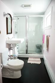 Design Sponge Bathrooms Remodeled Bathroom Photo By Chattman Photography For Carla Caruso