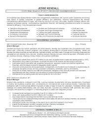 Client Relationship Management Resume Relationship Management Resume Breathelight Co