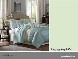 what color should i paint my bedroom illinois criminaldefense com astonishing what color is your parachute to inspire