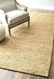 outdoor jute rug. Outdoor Jute Rug Rugs Area In Many Styles Including Contemporary Braided And Shag . D