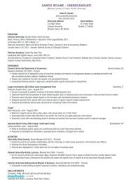 Examples Of Professional Resume Resume Example Summary Resume ...