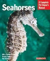 Amazon Com Barrons Seahorses Seahorses Pet Supplies