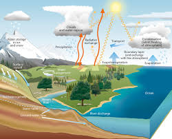 water cycle essay ielts water printable water cycle water water cycle essay ielts essay on water cycle essay ielts