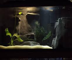 river aquarium with custom concrete 3d background by natetetete in decorating