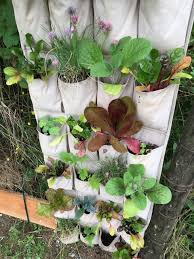 3 upcycled vertical planter ideas