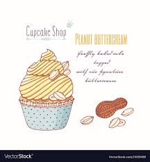 Hand Drawn Cupcake Peanut Flavor Royalty Free Vector Image