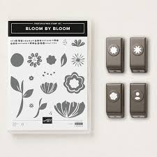 Afbeeldingsresultaat voor bloom by bloom stampin up