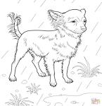 Игры раскраски собака 98