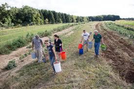 Chatham University Pa Program Chatham University Launches Food Bank Farm To Grow Fresh