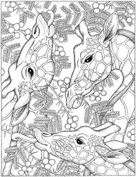 Small Picture 538 best Coloring images on Pinterest Coloring books Drawings