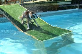 dog pool ramp dog pool ramp dog pool ramp canada