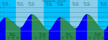 Chokoloskee Florida Tide Prediction And More