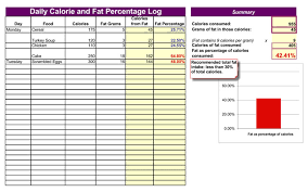 Daily Calories And Fat Log Template For Excel Printable Documents