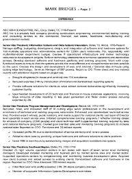 sample executive resume