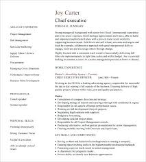 Resume Styles And Formats Best Marketing Resume Format Template