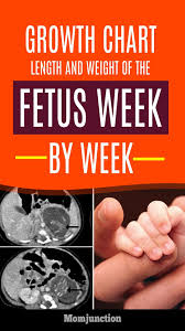 Growth Chart Fetal Length And Weight Week By Week First