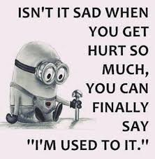 57 Funny Minion Quotes Of The Week And Funny Sayings Funny