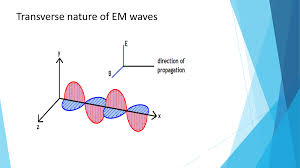 Transverse Nature Of Light Electromagnetic Waves Notes