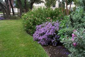 Small Picture Garden Design Garden Design with Plants for Dallas Your Source