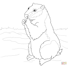 Small Picture Groundhogs coloring pages Free Coloring Pages