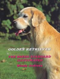 Catcombe Golden Retrievers