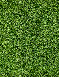 artificial grass texture. Grass Texture 2d - Google\u0027da Ara Artificial S