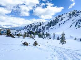 We're less than 15 minutes from the heart of lake tahoe's south shore community, the stateline casinos and heavenly ski resort, where they have the best fishing. Winter Hiking In Lake Tahoe With Your Dog Dont Stop Retrieving